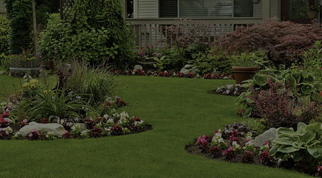 Colorado Springs Landscape Design